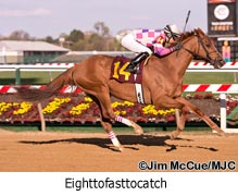 Eighttofasttocatch brings home another win
